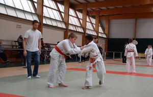 Interclubs 2016 de L'Energie Judo Le May sur Evre